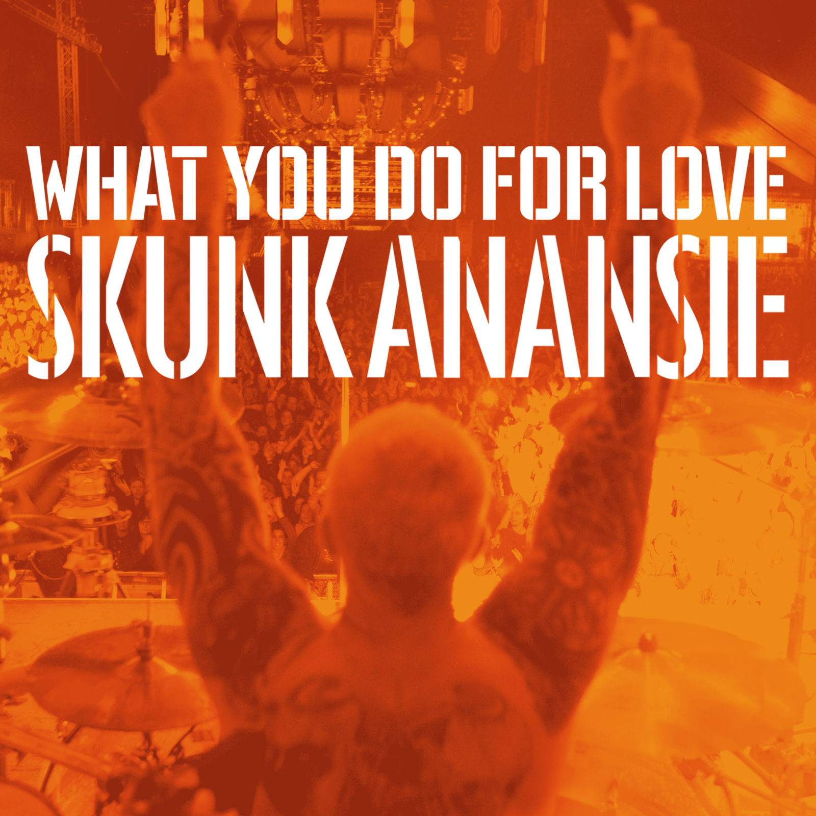 Skunk Anansie - What you do for love